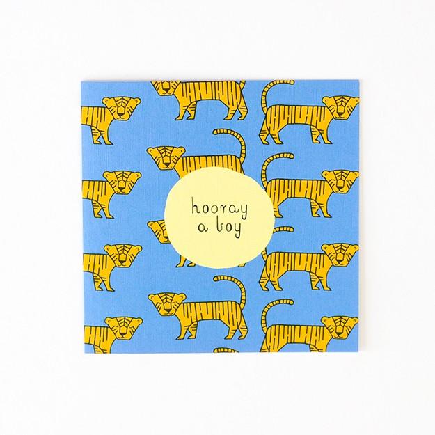 Baby Tiger DSC_0049