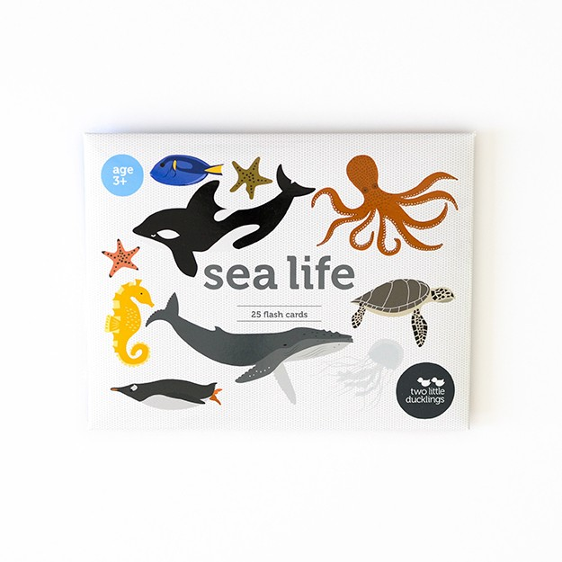 Sea Life DSC_0015-2
