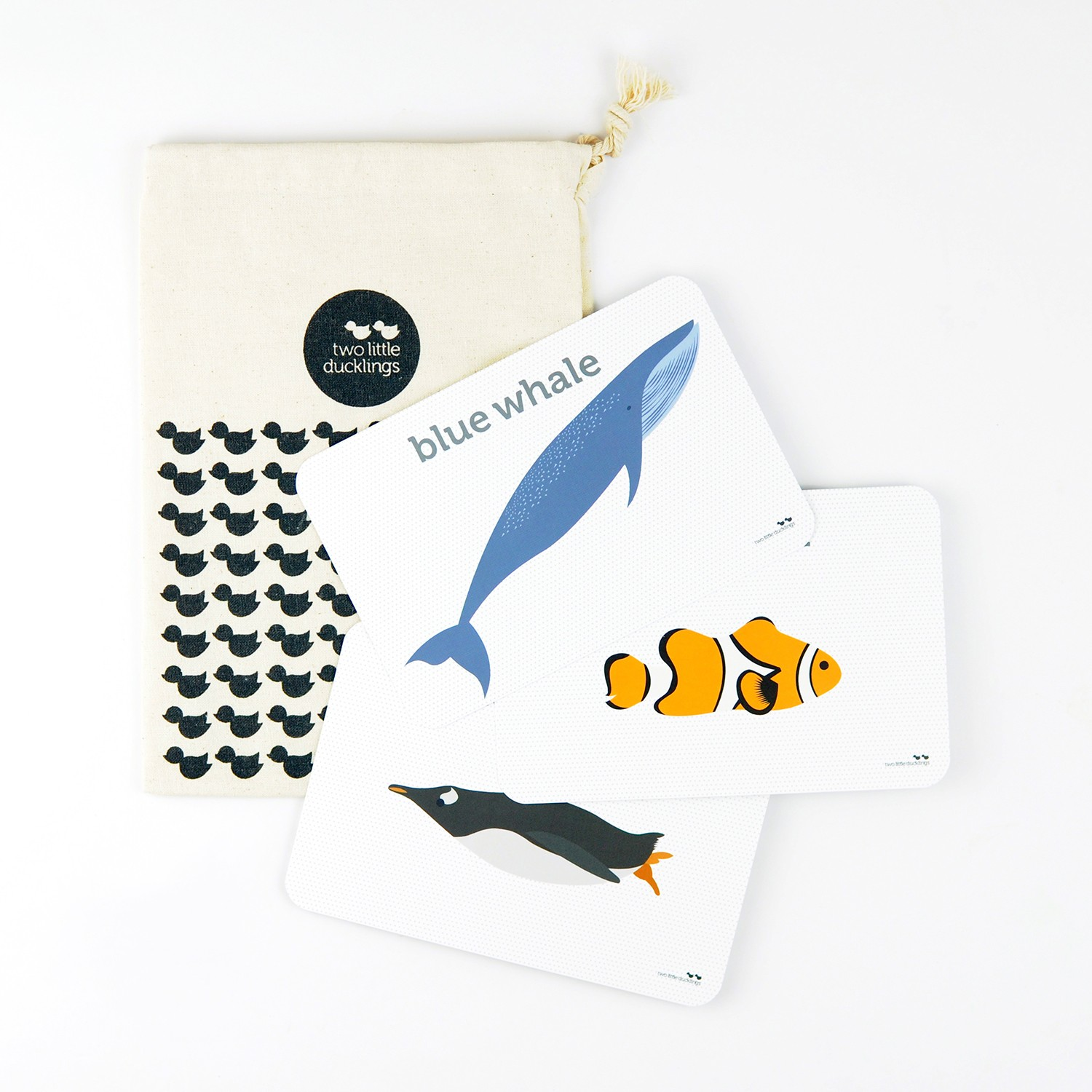 2LD Sea Life Flash Cards Inside