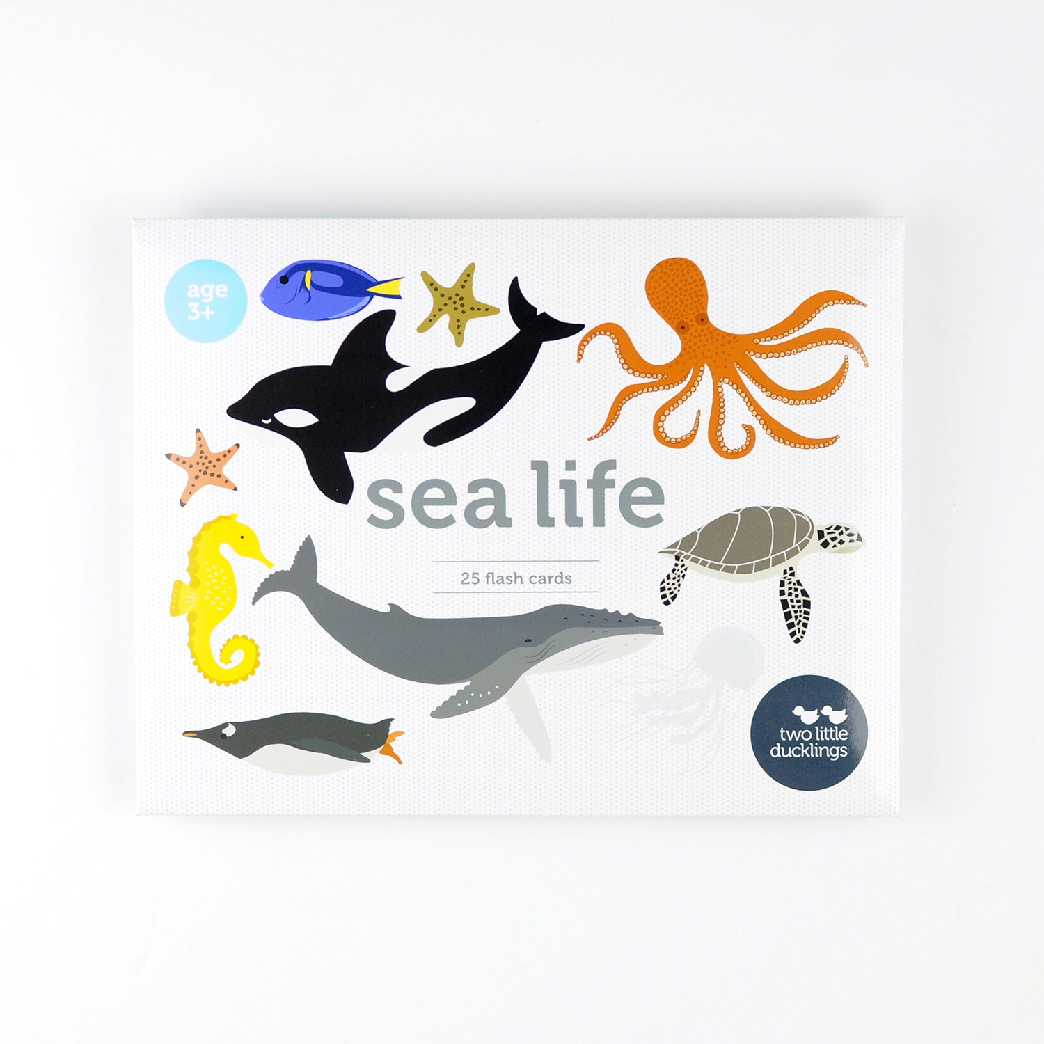 2LD Sea Life Flash Cards